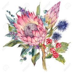Classical vintage floral greeting card, watercolor bouquet of. Illustration Blume, Watercolor Illustration, Watercolor Cards, Watercolor Flowers, Botanical Illustration, Protea Art, Graphic Design Lessons, Watercolor Paintings For Beginners, Flower Sketches