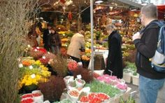 Smell the roses, tulips and many more flower species at Amsterdam's floating Flower Market. Purchase a bouquet or traditionally Dutch gifts. Amsterdam Market, Amsterdam Holidays, Tulip Bulbs, Floating Flowers, Water Management, My Roots, Flower Market, Fresh Flowers, Tulips