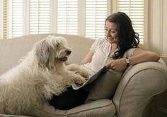 Home Remedy to Remove Tough Pet Odors thumbnail #EasyPin