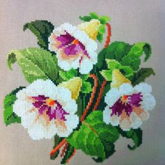 "Gloxinia Bouquet Cross Stitch. Pattern circa 1850 Germany. Berlin Woolwork. 11"" x 11""  Stitched by Lisa in June 2012  Won 2nd place at the Gesneriad Convention in Seattle Washington, July 2012"