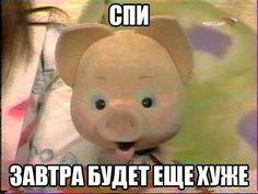 Funny School Memes, Funny Relatable Memes, Hello Memes, Happy Memes, Russian Memes, Fun Live, Cute Love Memes, You're My Favorite, Mood Pics