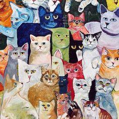 cat pics