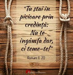 Rope Tying, Let's Chat, Let It Be, Bible