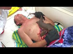 'Stab him!' Gruesome scene as friends STRUGGLE to pry tenacious shark from man's stomach | Conservative News Today
