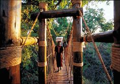 swing bridges in South Africa Private Games, Game Reserve, Bridges, South Africa, Outdoor Structures, Photos, Pictures, Cake Smash Pictures