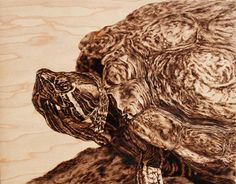 Self-taught artist Julie Bender is a master of pyrography – the art of drawing with heat..