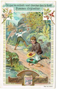 Liebig Farm children Trade card Original Vintage by Printvilla4you