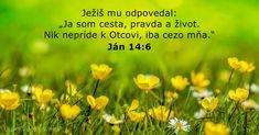 Ján 14:6 - DailyVerses.net