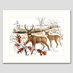 "White Tail Deer w/Mat (Cabin Wall Decor, Animal Wildlife Artwork) ""Buck and Doe"" -- Vintage Matted Print. Vintage Deer Art Print w/Mat , Wildlife Wall Decor, Animal Artwork -- Unframed Matted Print One in a beautiful series of 30 woodland animal and bird illustrations for home, office or nursery One ""White Tail Deer"" vintage, mint-condition James Lockhart print (attached to a new, off-white mat) Finely detailed 1970s artwork: A buck and doe make their water to waters edge, early winter..."
