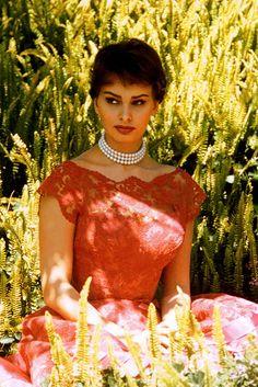 sharontates: Sophia Loren, 1960 Retro Beauty* Retro Fashion* Sexy Look* Retro Tips and Tricks* Vintage Look* DIY Outfit