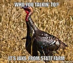 Ha ha. Turkey Fever