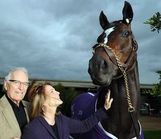 In 2009, Zenyatta became the first female to ever win the Breeders' Cup, when she rebounded from more than a 10-length gap to rally on the outside to beat Gio Ponti. Zenyatta may have lost at the 2010 Breeders' Cup Classic, but her 19-1 record is nothing to laugh at. In what became her final race, Zenyatta made her trademark move from last place but fell short in a photo finish to Blame. Zenyatta was runner-up for Horse of the Year in 2008 and 2009, but won the honor in 2010, besting…