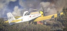 ArtStation - PZL-Mielec M-18 Dromader Hellenic airforce , Antonis Karidis