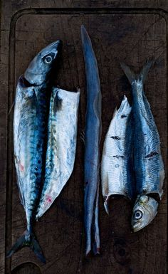 dead fish food styling - Google Search