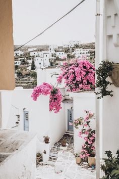 DAYS OF CAMILLE: TRIP IN GREECE : LES CYCLADES - PAROS #2 http://www.daysofcamille.com/2015/10/trip-in-greece-les-cyclades-paros-2.html GREECE PARIKIA LEFKES:  Bougainvillea, summer, travel, vacations, Greek island, architecture, turquoise, pink, summer white