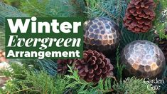 🌲 Winter Evergreen Arrangement 🌲 - YouTube Evergreen Container, Winter Container Gardening, Garden Gates, Christmas Decorations, Landscape, Youtube, Holidays, Scenery, Holidays Events