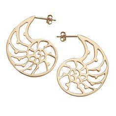 421f4376d Beach and Sea Jewelry - 14K Open Nautilus Earrings | Handmade Jewelry | JH  Breakell &