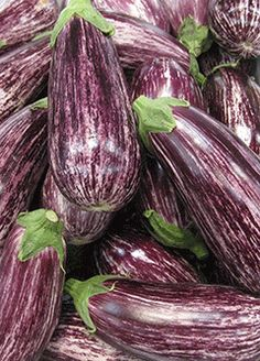 growing eggplants - Striped ones at that. Growing Vegetables In Containers, Colorful Vegetables, Fresh Fruits And Vegetables, Organic Container Gardening, Gardening Tips, Growing Eggplant, Purple Fruit, Bountiful Harvest, Eggplant Recipes
