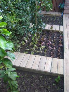 ウッドデッキのパティオに掘られた畑で家庭菜園