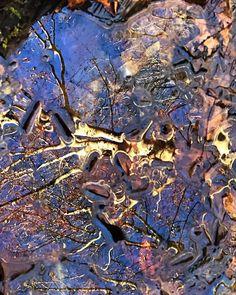 "Sam Calhoun on Instagram: ""Beech tree reflections, Bankhead National Forest #explore #getoutstayout  #optoutside #getoutide #adventuretime #travelblogger #travel…"""