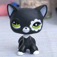 Cute Animal Memes, Cute Animals, Lps Shorthair, Baby Dolls For Sale, Lps Pets, Lps Littlest Pet Shop, Little Pet Shop, Short Hair Cats, Cute Toys