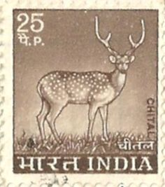 India - Stamp 1974, Chital (Deer) 25 P. by 9teen87's Postcards, via Flickr