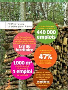 Infographie : Que représente le Bois énergie en France? Le bois énergie fait référence au bois servant à se chauffer : les granulés de bois (aussi appelés pellets de bois), les bûches et les bûchettes. #infographie #foret #bois #pin