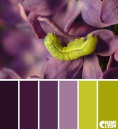 #Farbbberatung #Stilberatung #Farbenreich mit www.farben-reich.com Color Palette