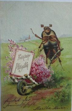 Pfingsten, Maikäfer, Schubkarre 1907, Prägekarte ♥ (5262)