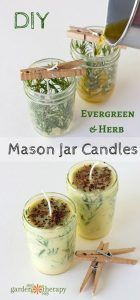 Evergreen Pressed Evergreen Herb Candles