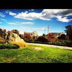 Fall at #Marist My Campus, Beautiful Things, New York, Mansions, House Styles, Fall, Mansion Houses, Autumn, New York City