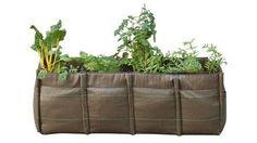 La mejor manera de plantar tu huerto en la terraza, no necesitas mucho espacio.