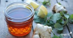 Ginger & Lemon Balm Honey Syrup for Colds & Flu - Herbal syrups are one of the easiest (and tastiest!) things to make for your natural medicine cabinet! Flu Remedies, Cold Home Remedies, Herbal Remedies, Natural Remedies, Lemon Balm Recipes, Soap Recipes, Free Recipes, Herbal Tinctures, Herbalism