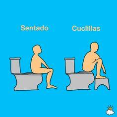 Es probable que no sepas que usar el baño de ESTA forma puede afectar a tu colon #salud