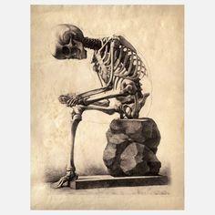 Anatomy Skeleton Print I