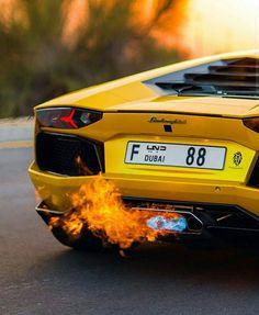 flametador