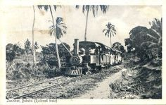 Railroad Train Zanzibar