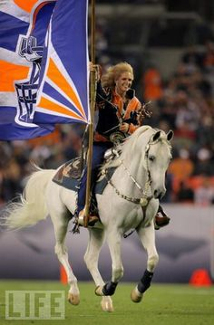 The Denver Bronco's mascot,Thunder the horse!