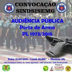 ALEXANDRE GUERREIRO: AUDIÊNCIA PÚBLICA SOBRE PORTE DE ARMA - SOCIOEDUCA...