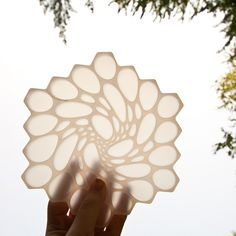 Hive Trivets | Flickr - Photo Sharing!