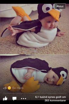 Fastelavn pingvin