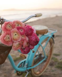 Counting down a few 2016 favs- and this is one of them. My beach bicycle & blooms series (one of my favs too!) and I wanted to say thank you so much for your friendship & following French Country Cottage along this year! I am excited about the possibilities in 2017 & wishing everyone a happy NYE & wonderful new year! #NYE #newyearseve #beach #bicycle #blooms #flowers #ranunculus #beachcruiser