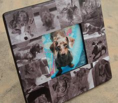 """Custom Dog Collage Frame Pet Photo Collage Picture Frame 8"""" x 8"""""""
