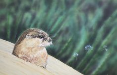 Otter Painting in Acrylic an original artwork Otters, Original Artwork, Journey, Bird, Artist, Painting, Animals, Animales, Otter