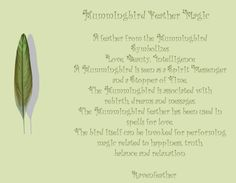 New Version of Hummingbird Feather Magic *Please check your local and federal guidelines for feather collection and possession! Feather Symbolism, Feather Meaning, Animal Symbolism, Magick, Wiccan, Witchcraft, Finding Feathers, Willow And Sage, Spiritual Animal