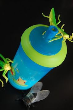 {Bug Accents} Sometimes something as simple as throwing a few bugs around a sipper cup can help you start the day off on the right foot! #CampSunnyPatch