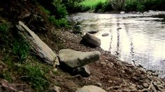 River seat - my new favourite thing to make by a river.