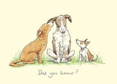 M270 Did You Know a greeting card by Anita Jeram for dog lovers
