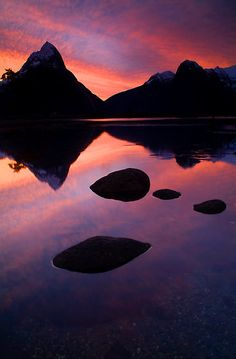 Milford Sound, Fiordland National Park by Paul Mercer - Nuova Zelanda