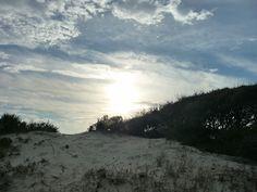 Fort Morgan area, Gulf Shores, AL
